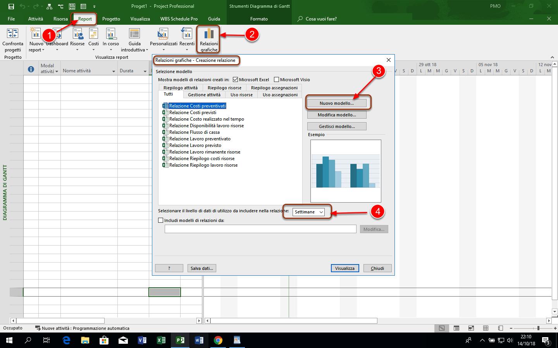Relazioni Grafiche di Microsoft Project